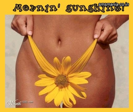 Morning SunshineGood Morning